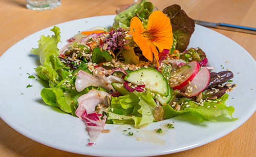 Bunter Salatteller mit gerösteten Körnern
